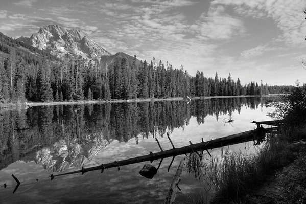 String Lake bw
