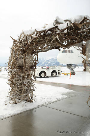 Bored at the Jackson Hole Airport.
