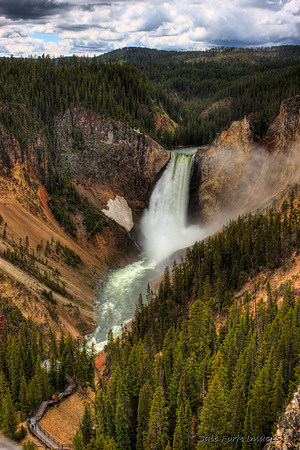 The Lower Falls of the Yellowstone River plunges into the Grand Canyon of the Yellowstone.  YNP, WY.