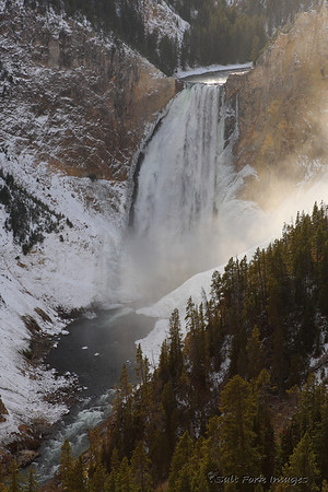 Lower Falls of the Yellowstone River.  Yellowstone National Park.  October 2009
