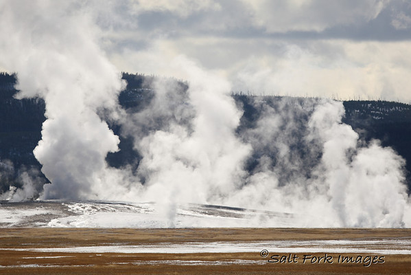 Yellowstone National Park.  Geysers on a cold day......