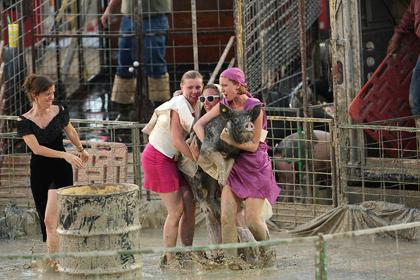 Don't forget to dress up for the Pig Wrestling at the Teton County Fair.  It is a rather formal event.