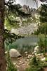 Surprise Lake - GTNP