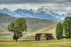 Miller Homestead in Jackson Hole's National Elk Refuge