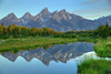 Mirror, mirror in the Hole.... Jackson Hole, Wyoming