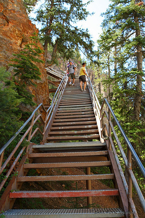 Three-hundred-twenty-eight steps from the bottom of Uncle Tom's trail at the Lower Falls of the Yellowstone back to the parking lot.  <br /> Elevation:  8,500-ish<br /> Oxygen:  Priceless!