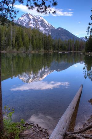 String Lake, GTNP.