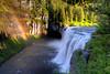 Upper Mesa Falls - June 24, 2010.  7:30 am.