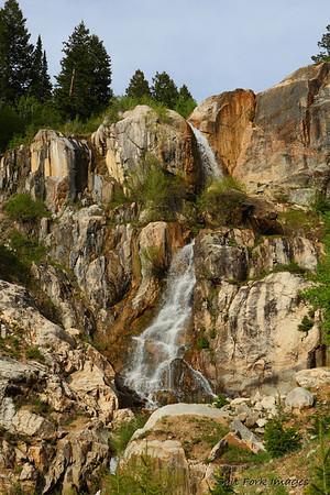 Along the path in Teton Canyon.