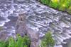 Below Upper Mesa Falls.