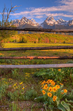 Teton Range near Cottonwood Creek.  GTNP.