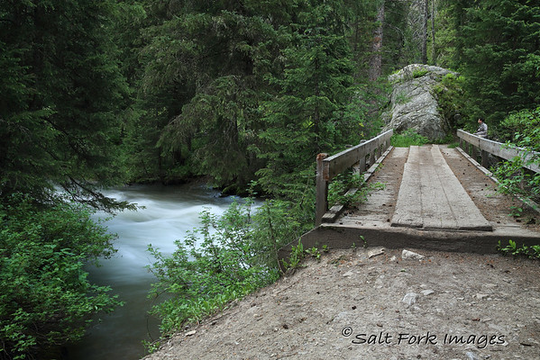 The rushing waters of Teton Creek - Jedediah Smith Wilderness Area - Targhee National Forest - Wyoming