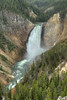 Lower Falls on the Yellowstone River - Canyon District, YNP