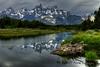 Beaver den - Grand Teton National Park - Wyoming