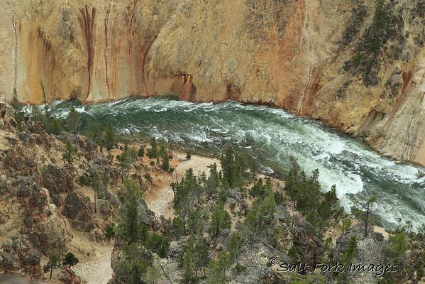 Yellowstone River below the falls.