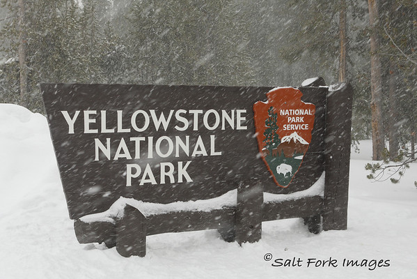 The snow was coming down hard as we left the park through the west gate.