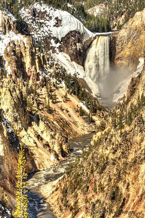 Lower Falls of the Yellowstone, YNP