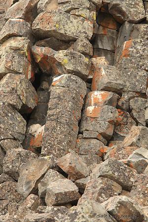Basalt columns at Sheepeater Cliffs - YNP.