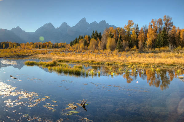 Sometimes the mountains must yield center stage to the fall color.