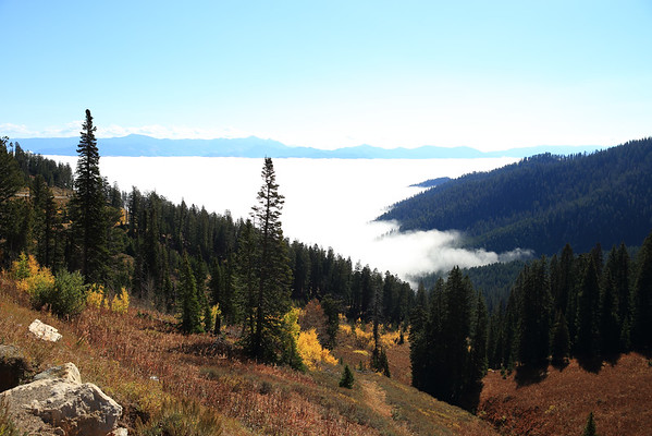 The view of Jackson Hole from the top of Teton Pass is always different.  Sometimes you can't see it at all!