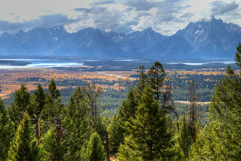 Fall in the Tetons -  Just Beautiful!