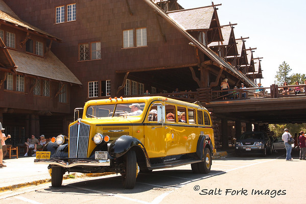 The old yellow tour cars have been brought back into service at Old Faithful Inn.