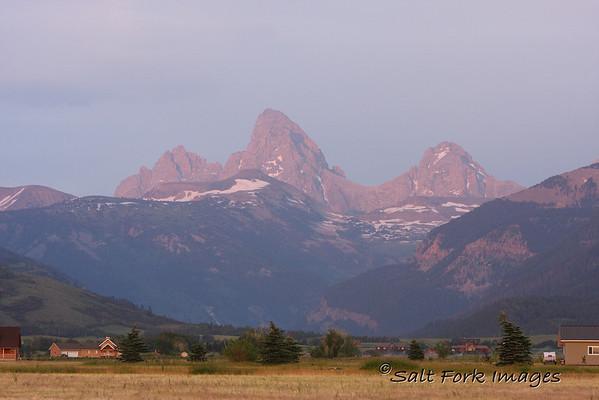 Purple Mountain Majesty!