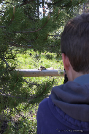 Aaron stalks the mighty Wyoming squirrel.