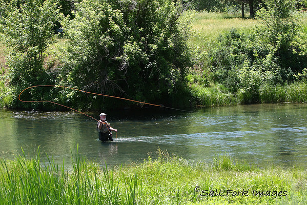 Fly fishing on the Warm River east of Ashton, Idaho.  A little ways downstream we could see 18-inch cutthroats and rainbows in the water.