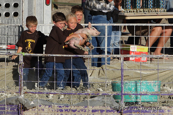 Little kids get to wrestle little pigs.  It only makes sense.