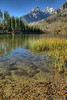 String Lake.  GTNP.