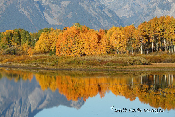 Fall color at Oxbow.