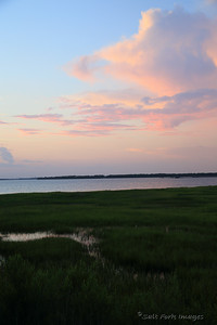 Cooper River and tidal marsh at Charleston Harbor.
