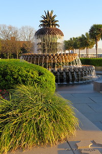 Pineapple Fountain in Waterfront Park - Charleston, SC