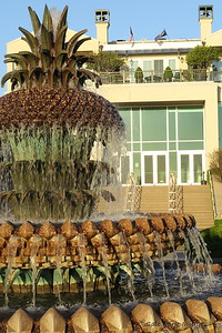 The pineapple is a symbol of hospitality to the people of Charleston, South Carolina.