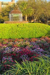 Waterfront Park - Charleston, SC