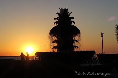 Pineapple Fountain in Riverfront Park - Charleston, SC