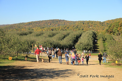Lots of people visiting the mountains of North Carolina for APPLES!