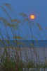 Full Moon and Ocean Breezes