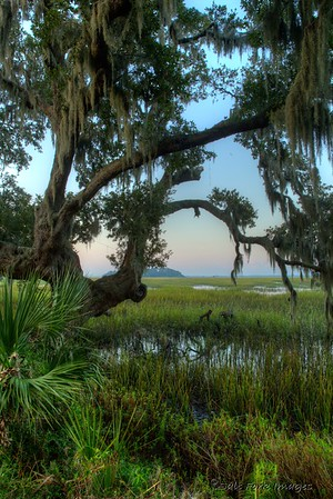 Along the Broad River - Habersham Community - Beaufort, South Carolina