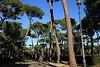 Villa Borghose - public park in Rome, Italy