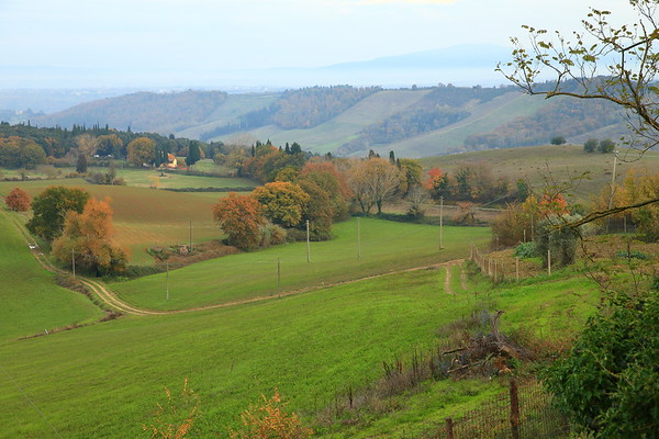 The rolling hills of Tuscany - near San Gimignano, Italy