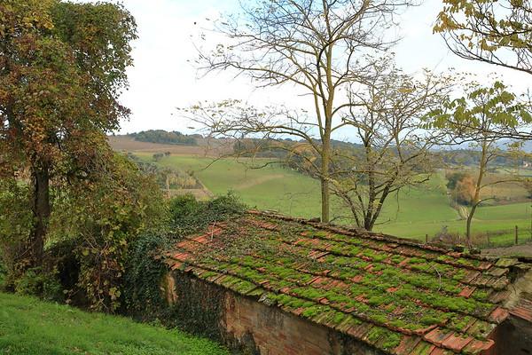 On a farm in Tuscany - near San Gimignano, Italy