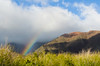 Roadside rainbow - Honoapi'ilani Highway