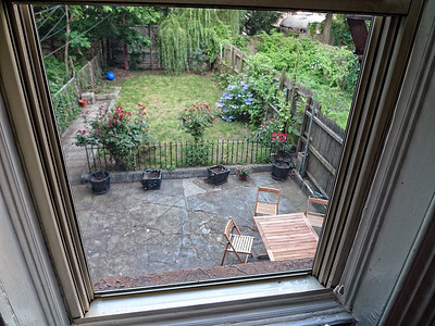 A Backyard in Brooklyn!