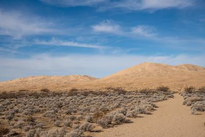 Kelso Dunes, Mojave Desert