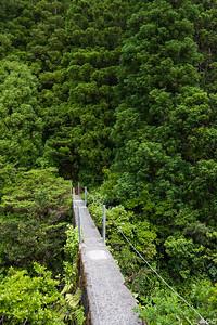Portugal, Azores, Faial: Levada aqueduct.