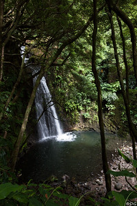 Portugal, Azores, São Miguel, Faial da Terra