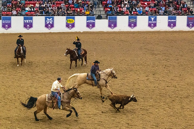 World Series of Team Roping Final