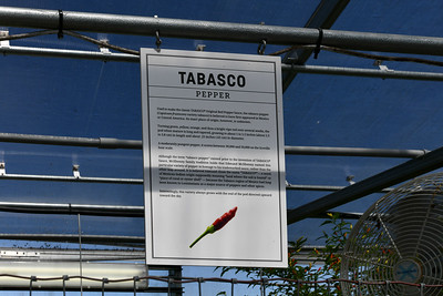 TABASCO® Factory Tour and Museum